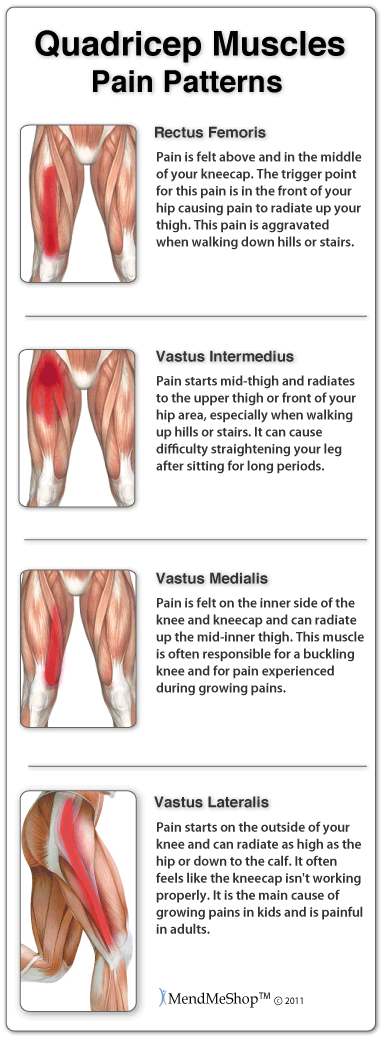 Thigh Muscle pulls and strains
